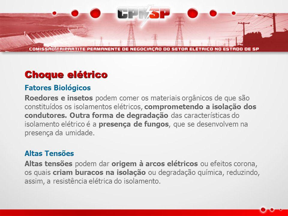 Choque elétrico Fatores Biológicos