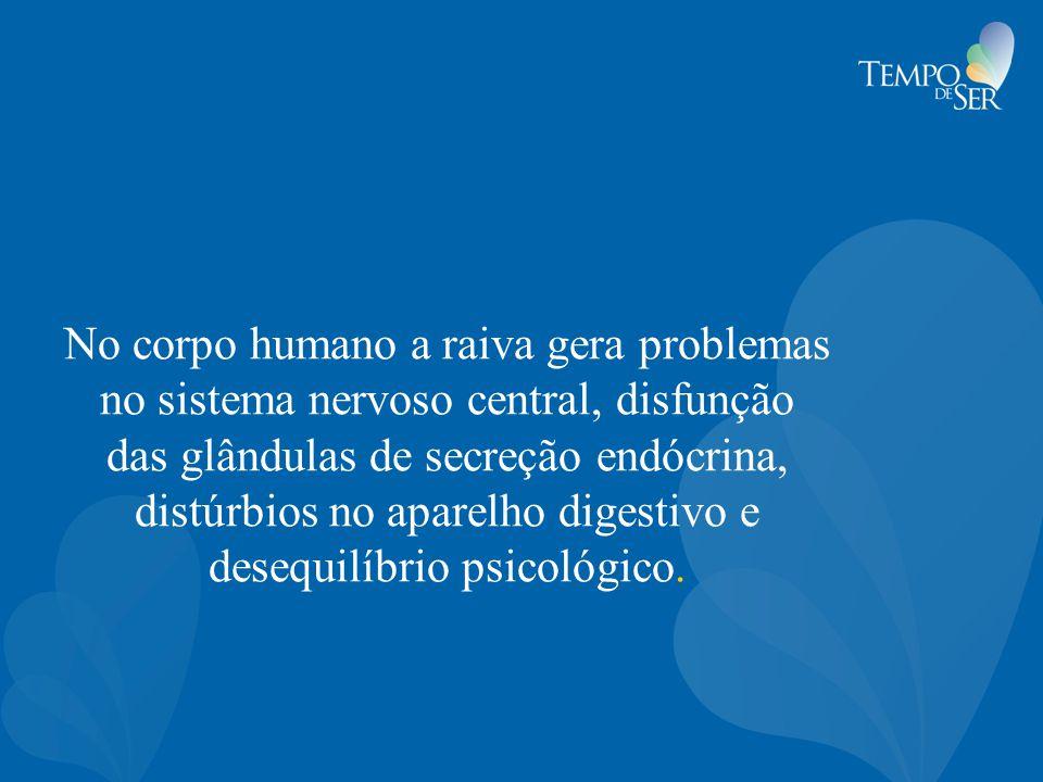 No corpo humano a raiva gera problemas no sistema nervoso central, disfunção das glândulas de secreção endócrina, distúrbios no aparelho digestivo e desequilíbrio psicológico.
