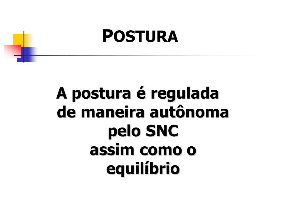 POSTURA A postura é regulada de maneira autônoma pelo SNC assim como o equilíbrio.