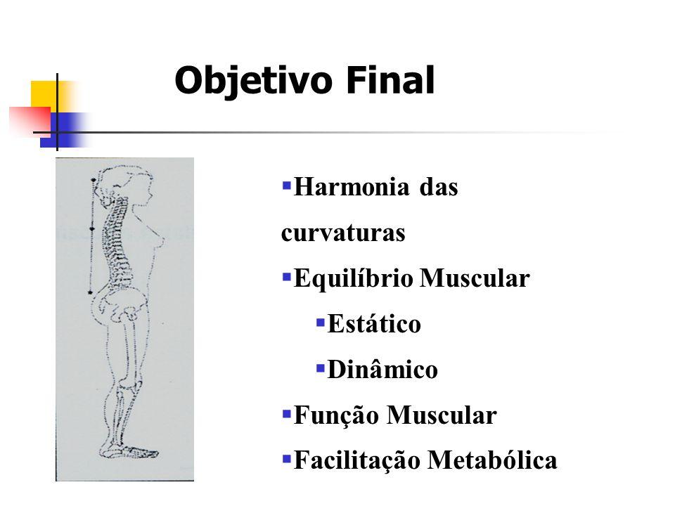 Objetivo Final Harmonia das curvaturas Equilíbrio Muscular Estático