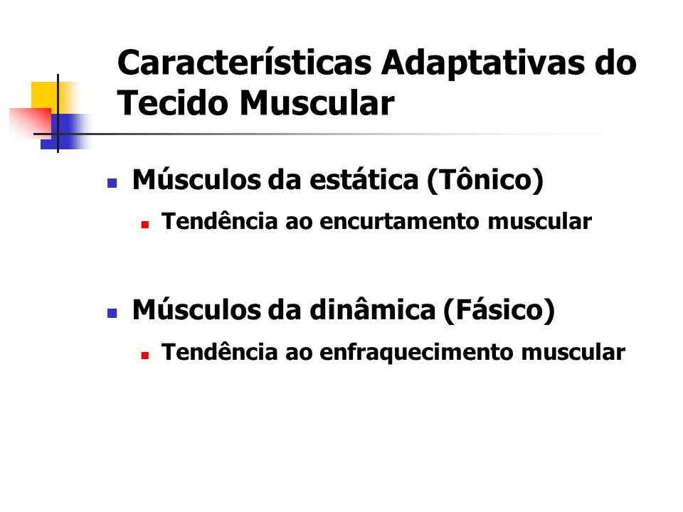 Características Adaptativas do Tecido Muscular