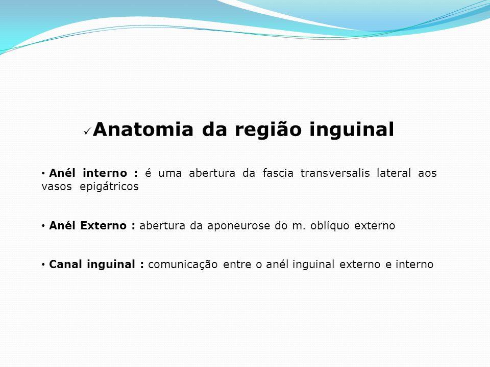 Anatomia da região inguinal