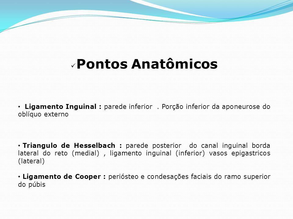Pontos Anatômicos Ligamento Inguinal : parede inferior . Porção inferior da aponeurose do oblíquo externo.