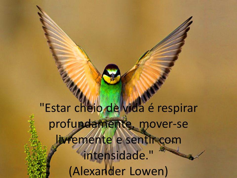 Estar cheio de vida é respirar profundamente, mover-se livremente e sentir com intensidade. (Alexander Lowen)