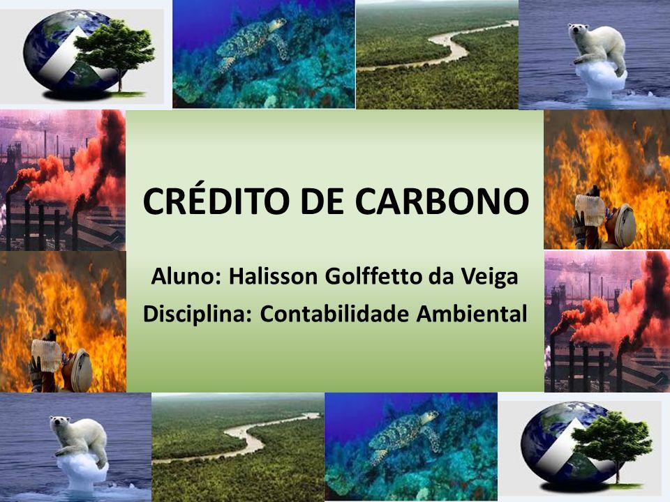 Aluno: Halisson Golffetto da Veiga Disciplina: Contabilidade Ambiental