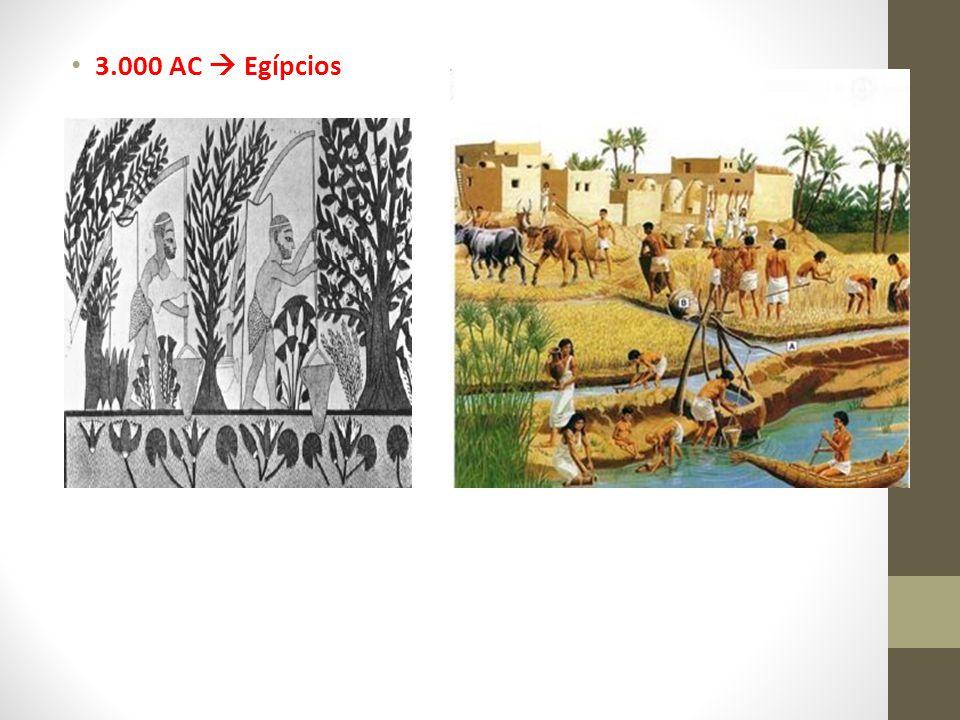 3.000 AC  Egípcios 2.000 AC  China e Índia