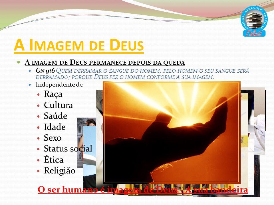 O ser humano é imagem de Deus - A sua bandeira