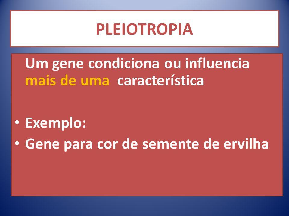 PLEIOTROPIA Um gene condiciona ou influencia mais de uma característica.