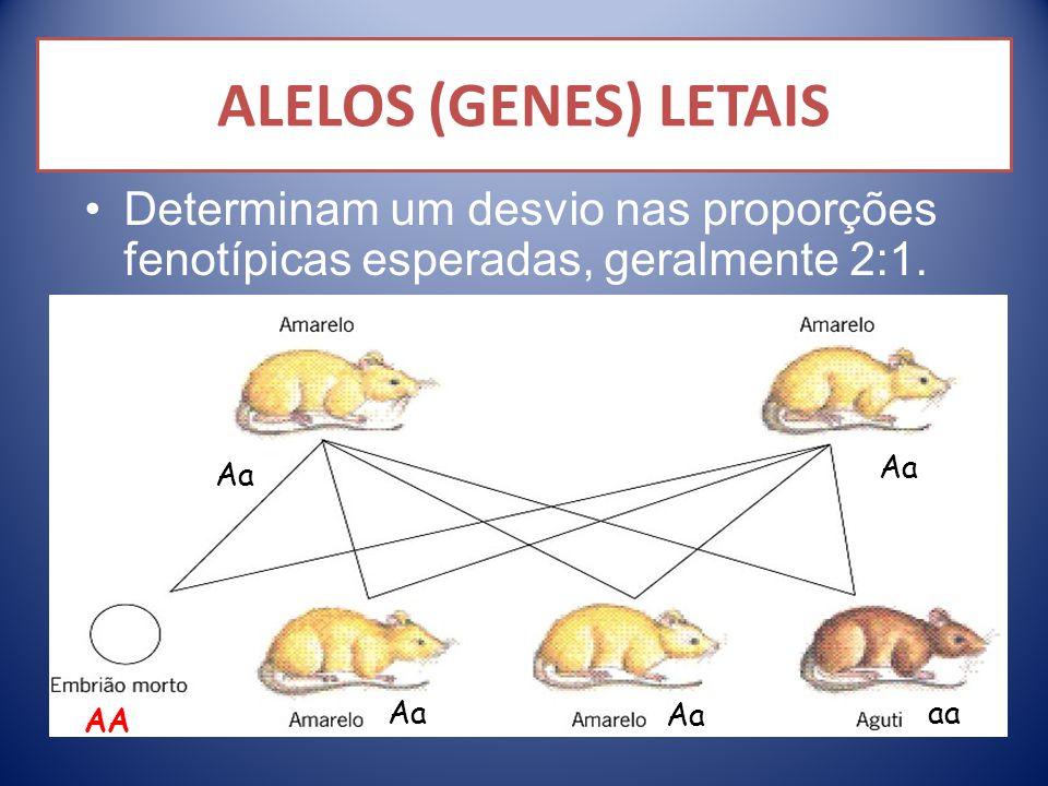 ALELOS (GENES) LETAIS Determinam um desvio nas proporções fenotípicas esperadas, geralmente 2:1. Aa.