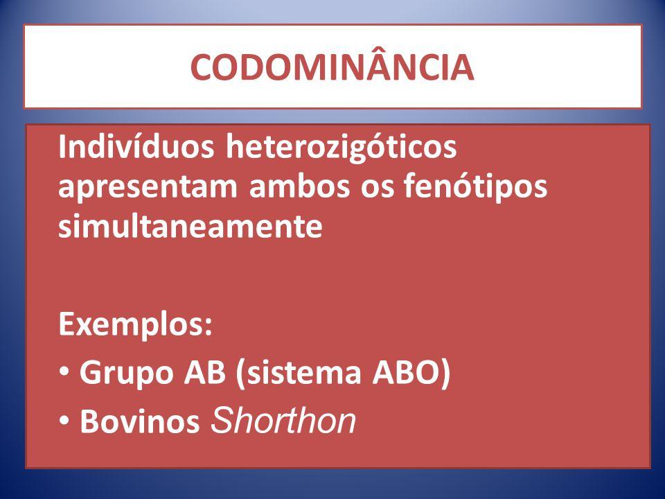 CODOMINÂNCIA Indivíduos heterozigóticos apresentam ambos os fenótipos simultaneamente. Exemplos: Grupo AB (sistema ABO)