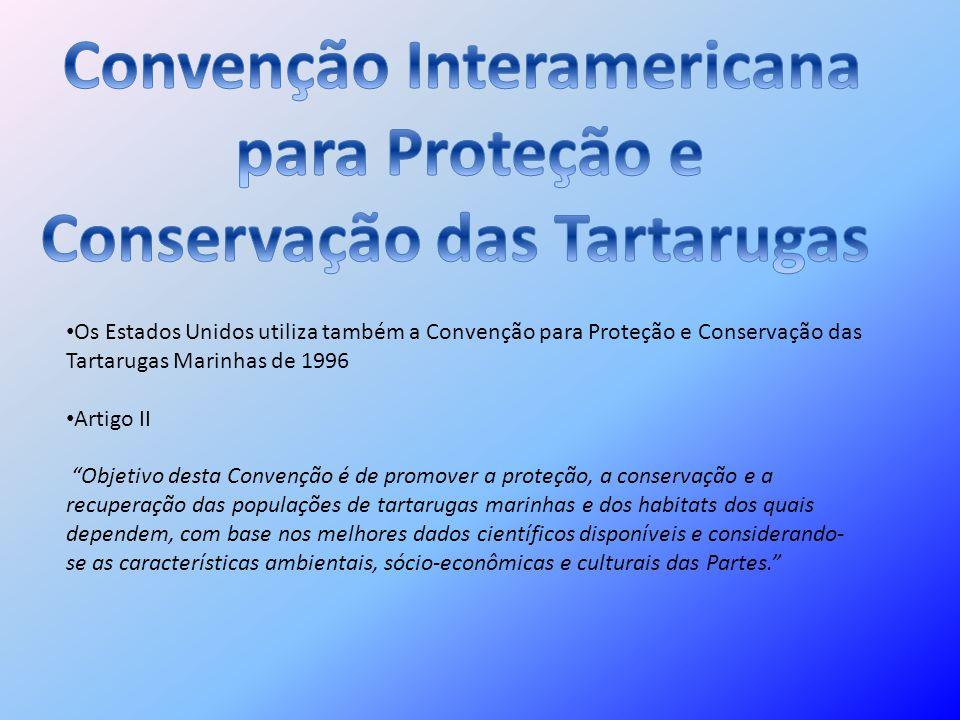 Convenção Interamericana Conservação das Tartarugas