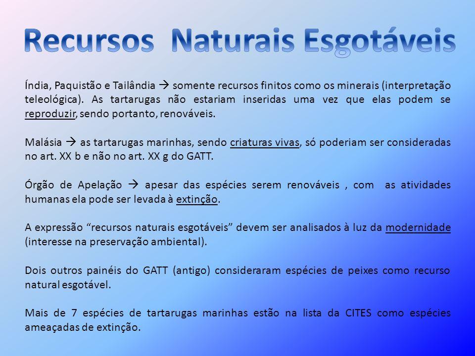 Recursos Naturais Esgotáveis