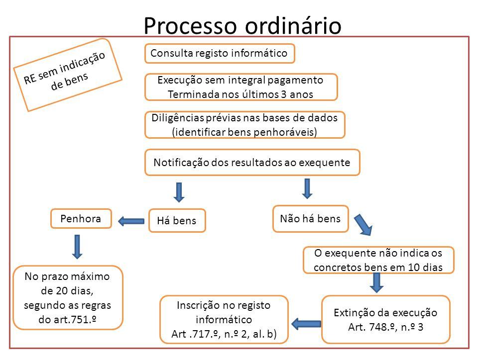 Processo ordinário Consulta registo informático