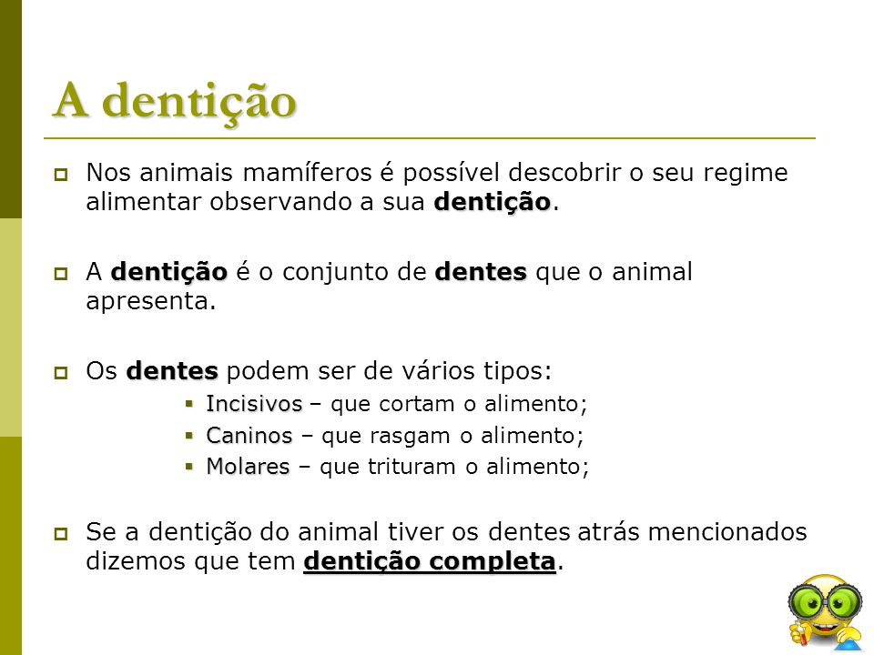 A dentição Nos animais mamíferos é possível descobrir o seu regime alimentar observando a sua dentição.