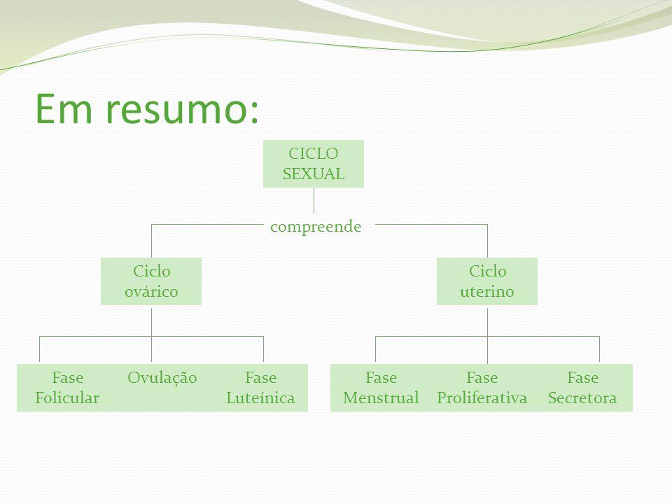 Em resumo: CICLO SEXUAL compreende Ciclo ovárico Ciclo uterino