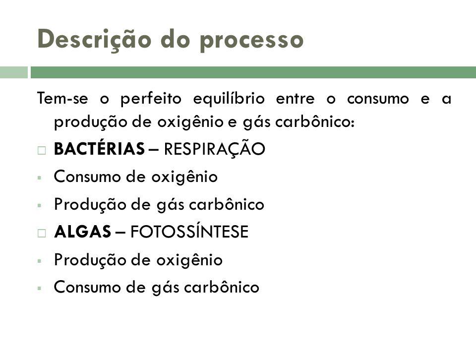 Descrição do processo Tem-se o perfeito equilíbrio entre o consumo e a produção de oxigênio e gás carbônico: