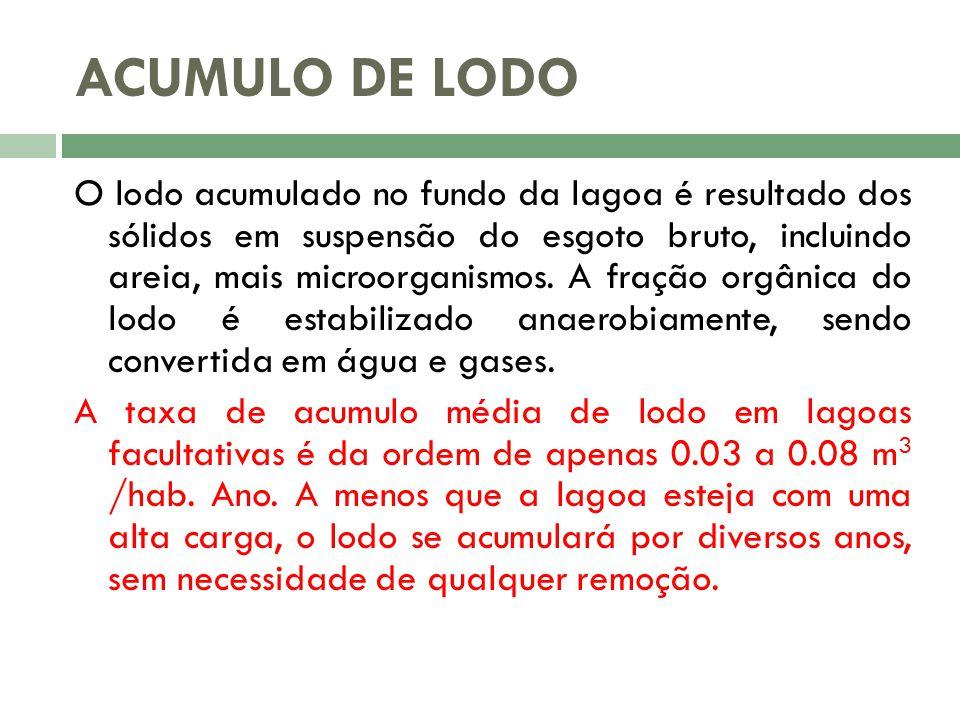 ACUMULO DE LODO