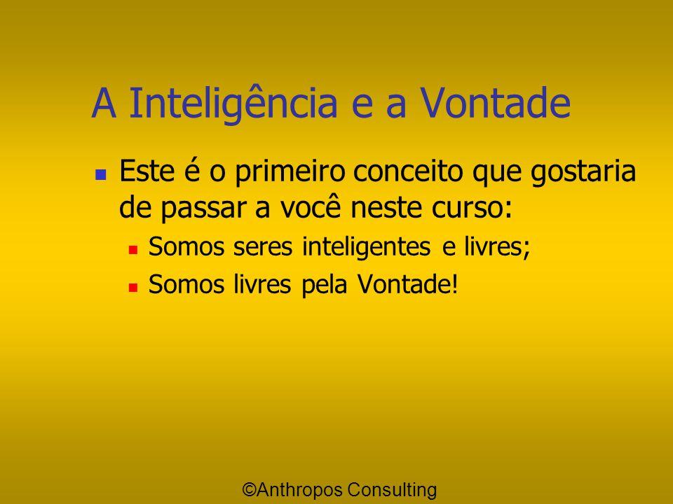 A Inteligência e a Vontade