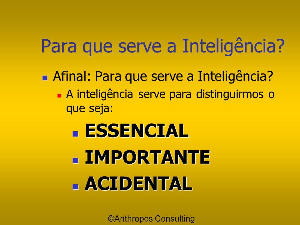 Para que serve a Inteligência