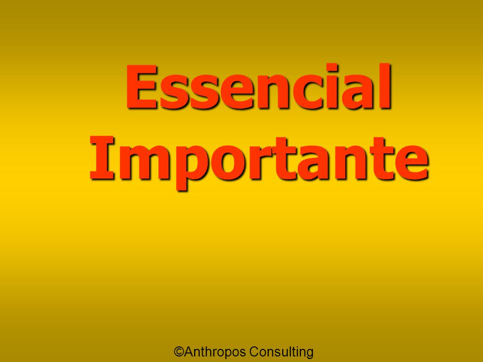 Essencial Importante ©Anthropos Consulting