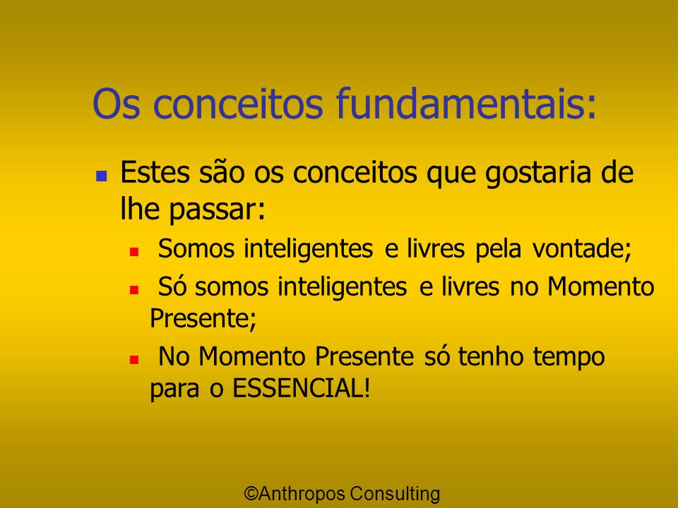 Os conceitos fundamentais: