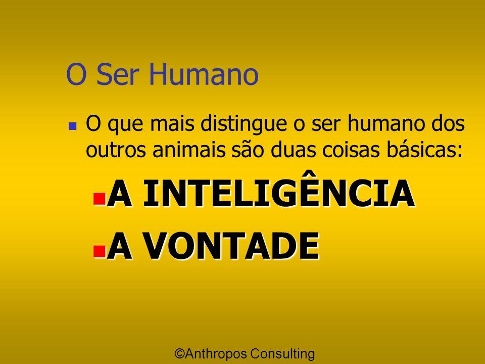 A INTELIGÊNCIA A VONTADE O Ser Humano