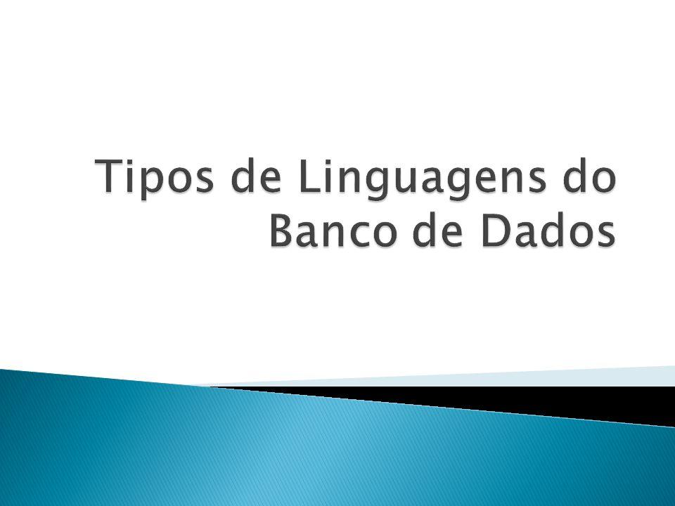 Tipos de Linguagens do Banco de Dados