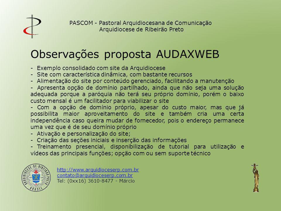 Observações proposta AUDAXWEB