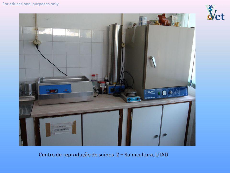 Centro de reprodução de suínos 2 – Suinicultura, UTAD