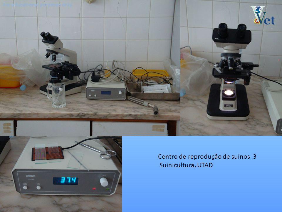 Centro de reprodução de suínos 3 Suinicultura, UTAD