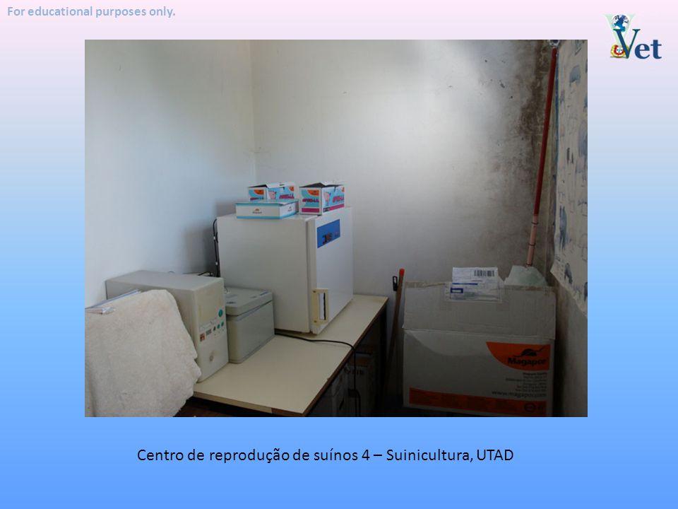 Centro de reprodução de suínos 4 – Suinicultura, UTAD