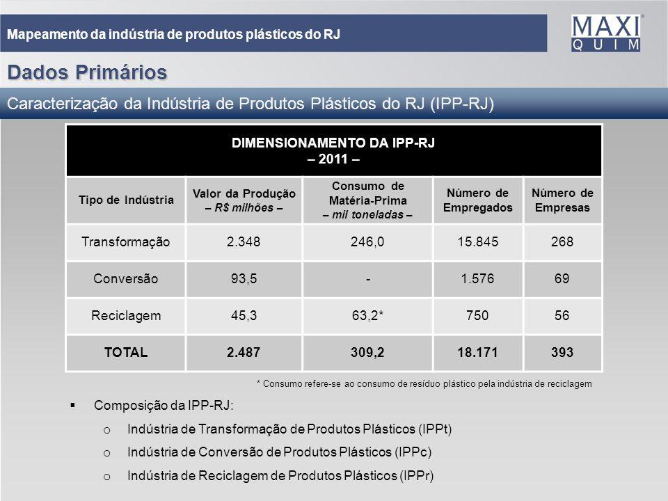 DIMENSIONAMENTO DA IPP-RJ