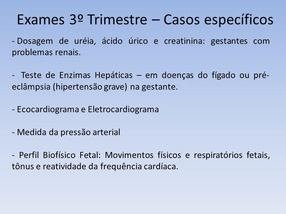Exames 3º Trimestre – Casos específicos