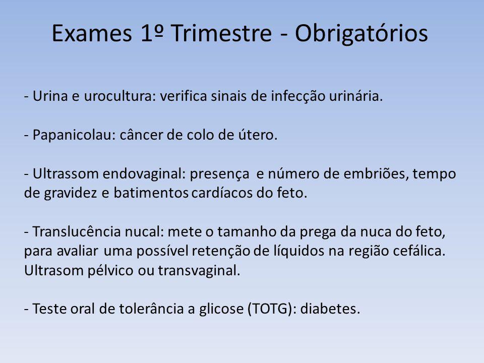 Exames 1º Trimestre - Obrigatórios