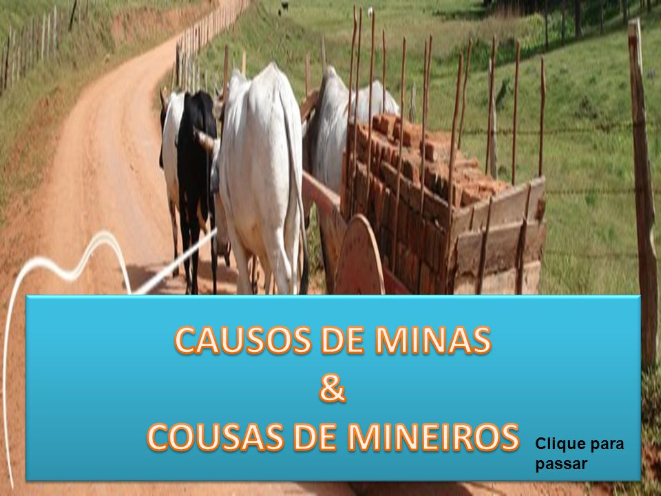 CAUSOS DE MINAS & COUSAS DE MINEIROS