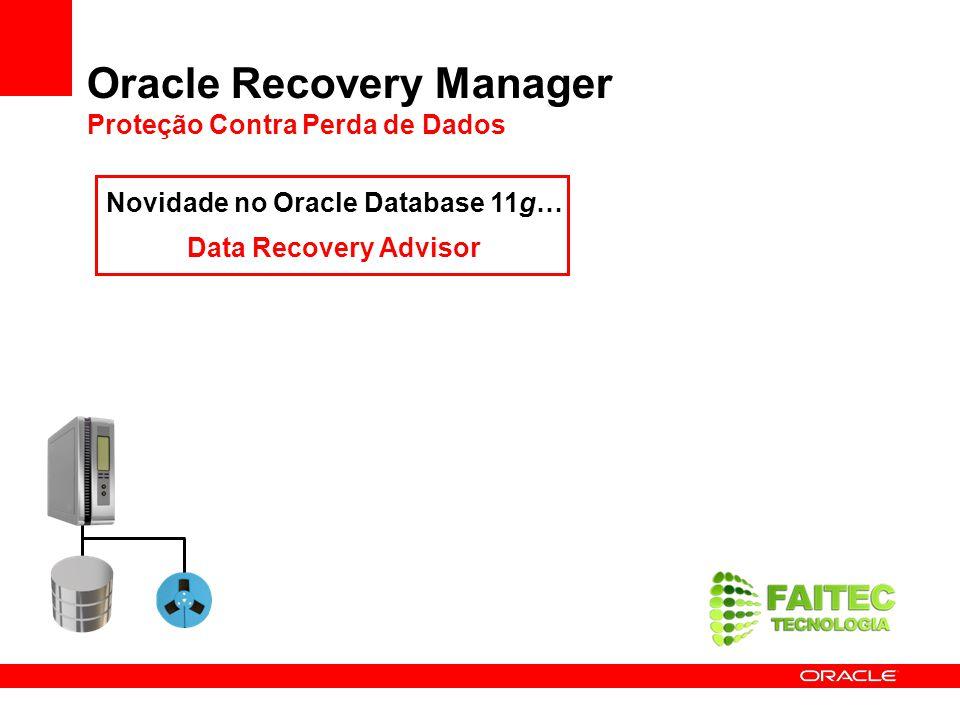 Oracle Recovery Manager Proteção Contra Perda de Dados