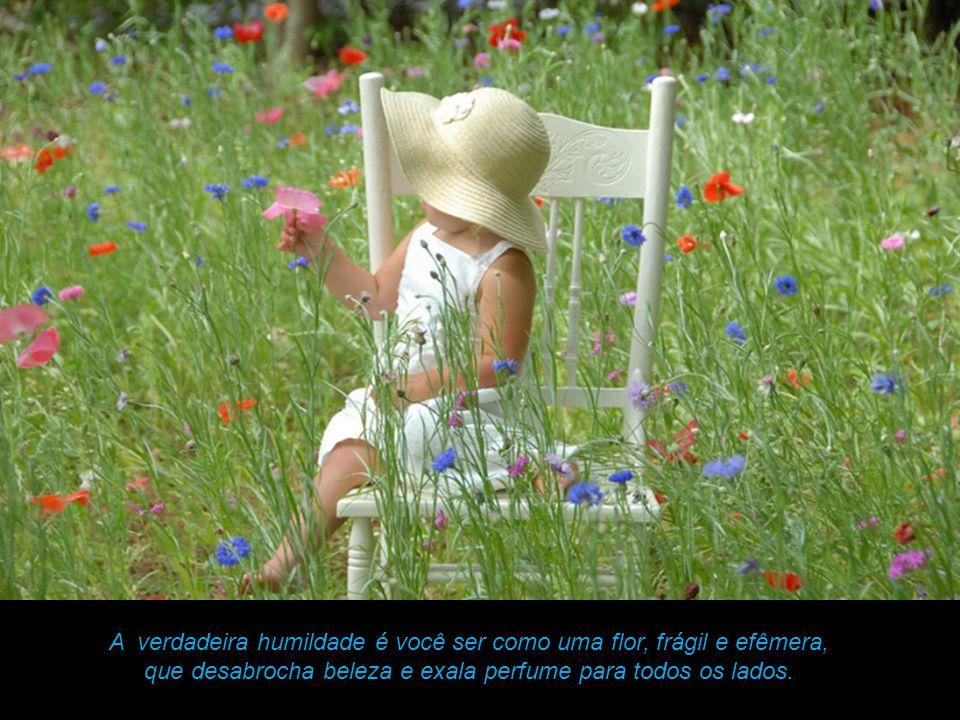 A verdadeira humildade é você ser como uma flor, frágil e efêmera, que desabrocha beleza e exala perfume para todos os lados.