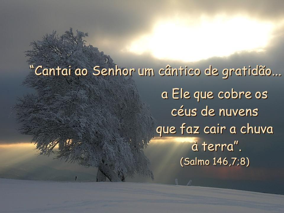 Cantai ao Senhor um cântico de gratidão...