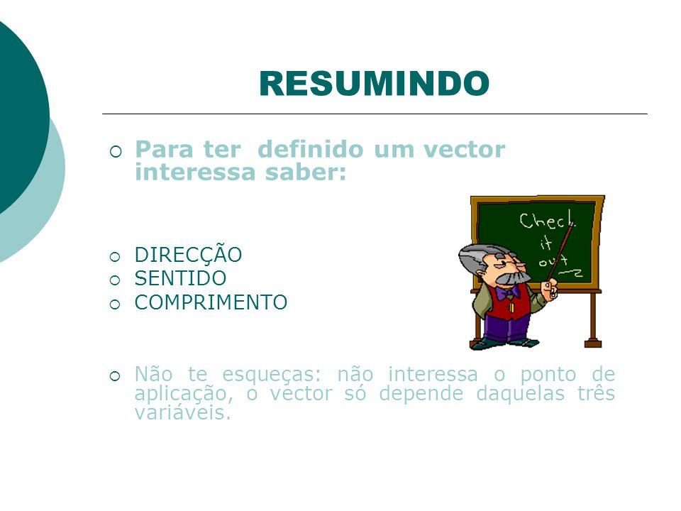 RESUMINDO Para ter definido um vector interessa saber: DIRECÇÃO