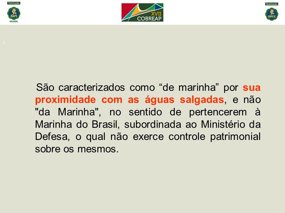 São caracterizados como de marinha por sua proximidade com as águas salgadas, e não da Marinha , no sentido de pertencerem à Marinha do Brasil, subordinada ao Ministério da Defesa, o qual não exerce controle patrimonial sobre os mesmos.