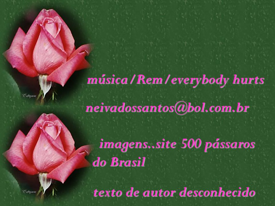 música/Rem/everybody hurts