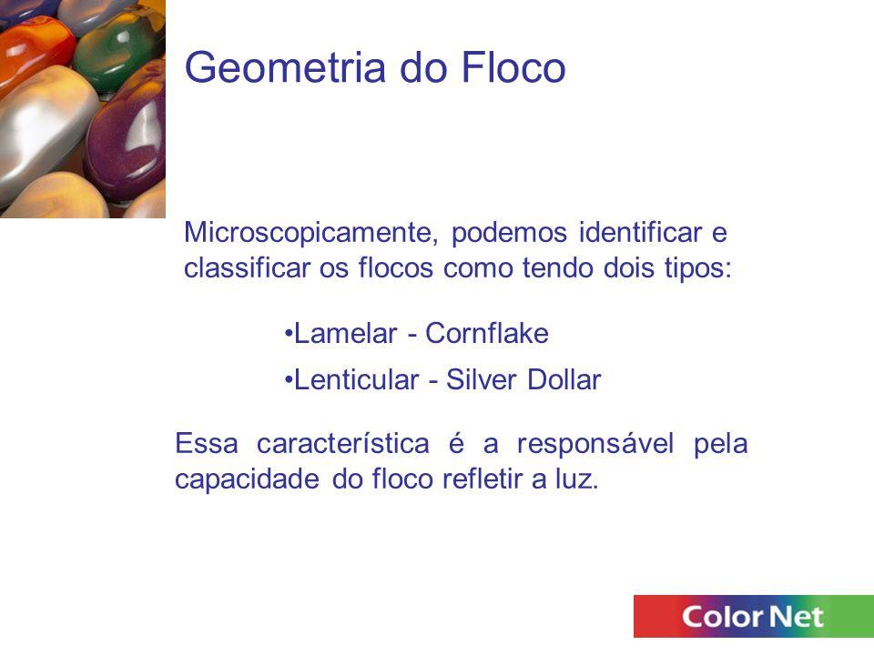 Geometria do Floco Microscopicamente, podemos identificar e classificar os flocos como tendo dois tipos: