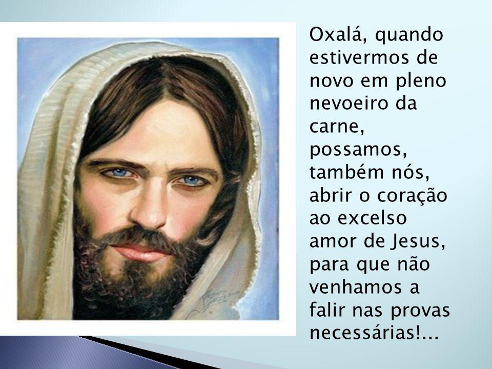 Oxalá, quando estivermos de novo em pleno nevoeiro da carne, possamos, também nós, abrir o coração ao excelso amor de Jesus, para que não venhamos a falir nas provas necessárias!...