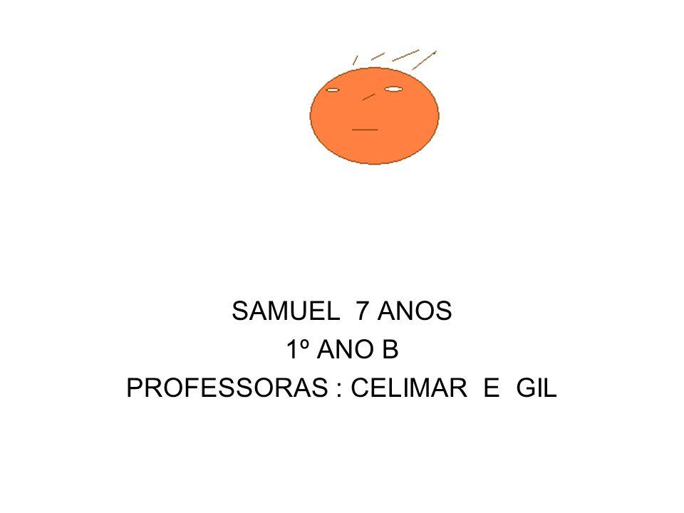 SAMUEL 7 ANOS 1º ANO B PROFESSORAS : CELIMAR E GIL