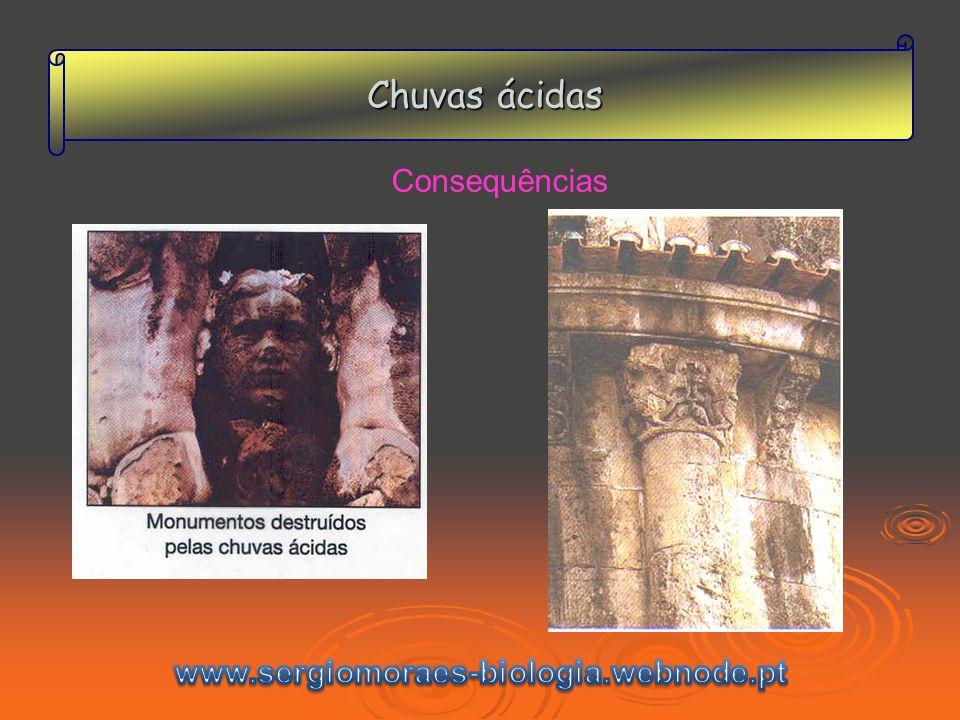 Chuvas ácidas Consequências www.sergiomoraes-biologia.webnode.pt