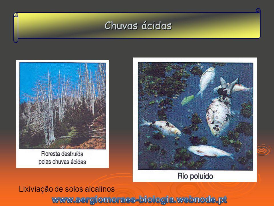 Chuvas ácidas www.sergiomoraes-biologia.webnode.pt