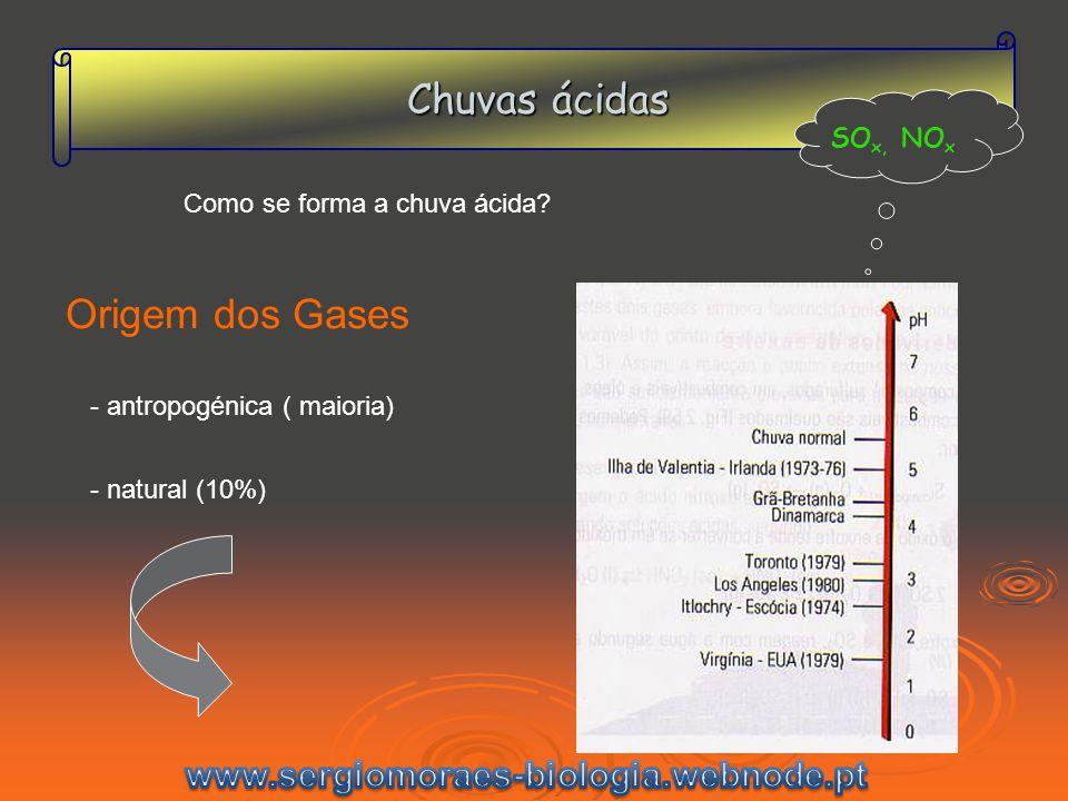 Chuvas ácidas Origem dos Gases www.sergiomoraes-biologia.webnode.pt