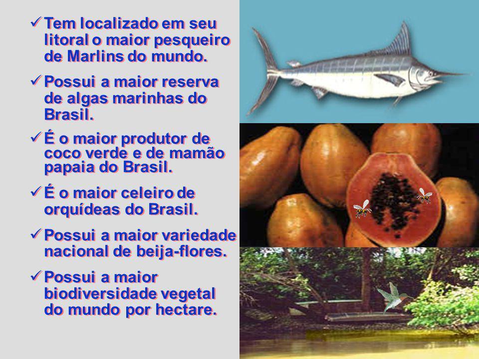 Tem localizado em seu litoral o maior pesqueiro de Marlins do mundo.
