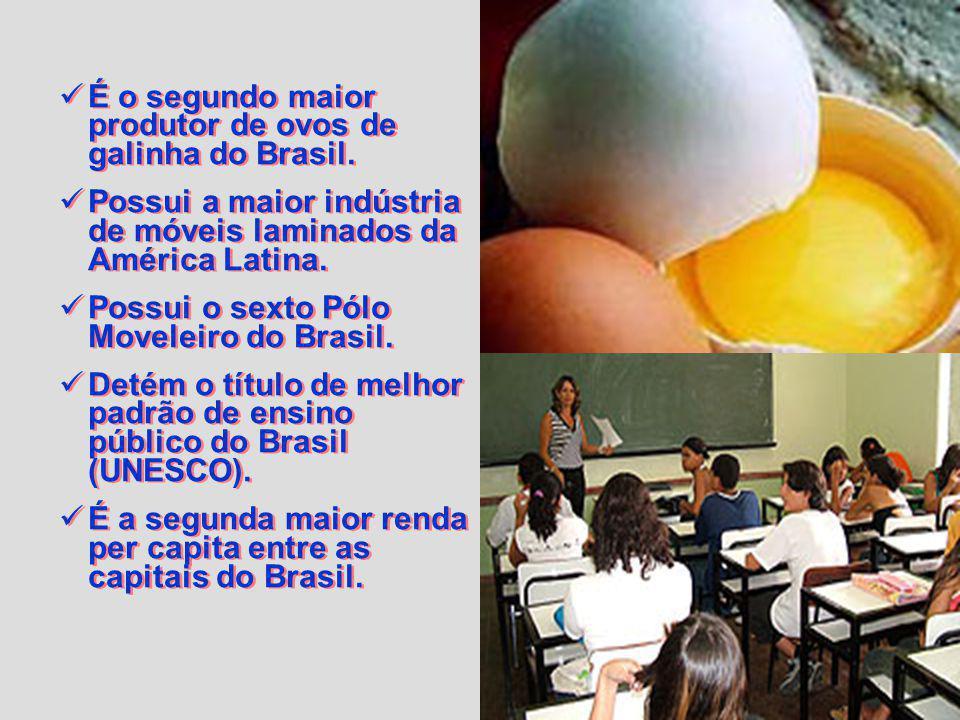 É o segundo maior produtor de ovos de galinha do Brasil.