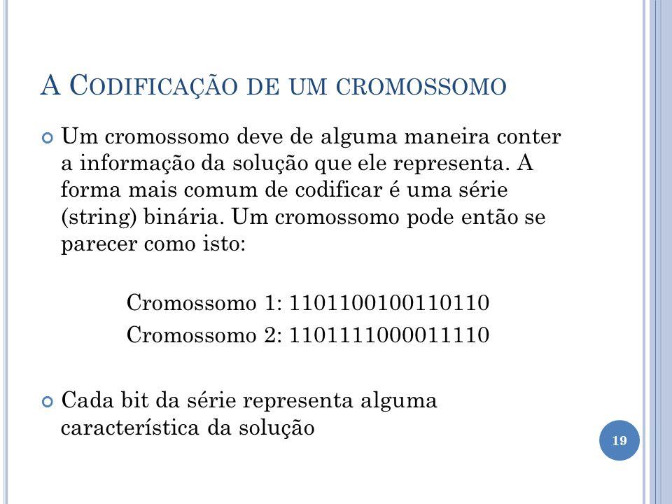 A Codificação de um cromossomo